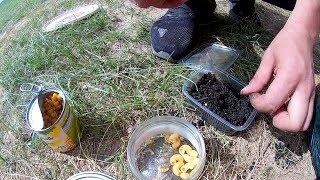 Рыбалка на Ахтубе  Ловля на макароны, кукурузу, червя