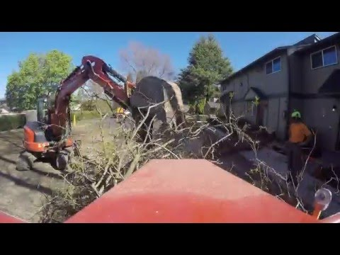 Tree Removal Morbark Chipper - Kubota Excavator - Medford Oregon