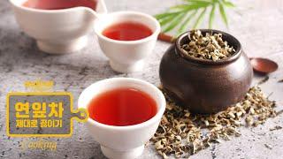 연잎차 끓이는법 연잎차효능 제대로 마셔요!