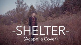 Porter Robinson & Madeon - Shelter - Acapella Cover