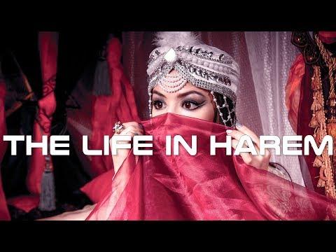 the-life-in-harem-documentary