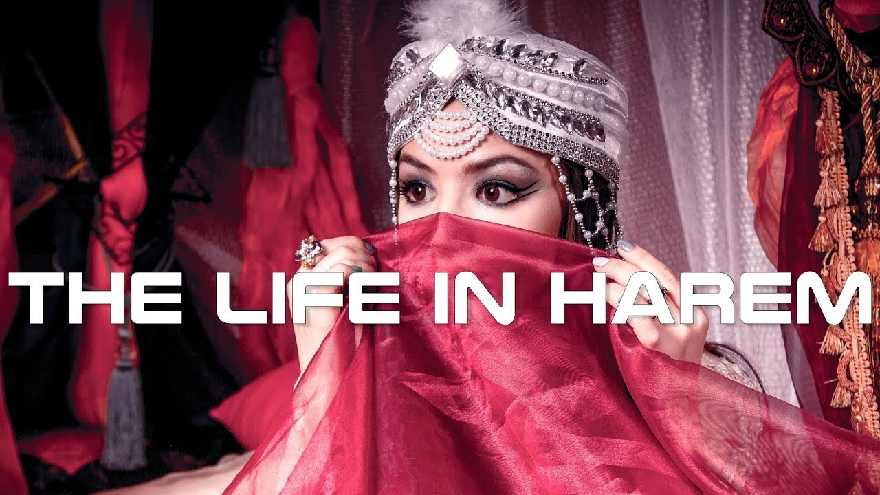 The Life in Harem Documentary image