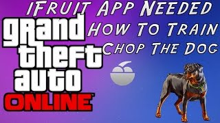 Game | GTA 5 How To Train Chop The Dog | GTA 5 How To Train Chop The Dog