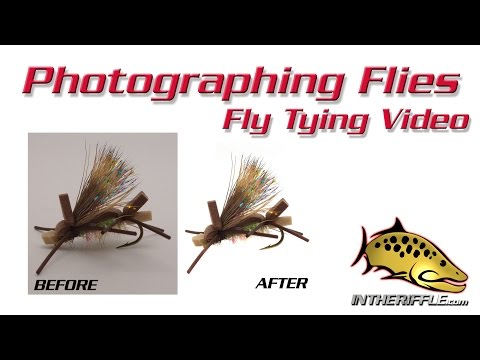 Photographing Flies On White Background - Photoshop Tutorial - Fly Tying Photography