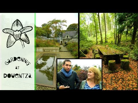 Two of Ireland's Best Gardens with Alberto