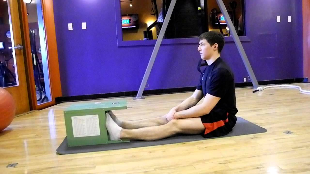 Fitness Test Sit Reach Youtube