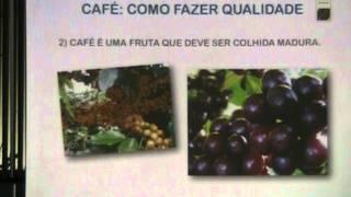 Simpósio Baturité - Qualidade de café Ensey Uejo Neto - SPECIALTY COFFEE BUREAU