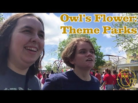 Owl's Flower ~ Theme Parks and Roller Coasters