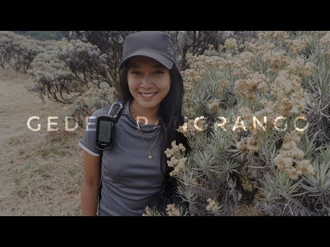 Pendakian Gunung GEDE PANGRANGO via PUTRI - CIBODAS (with GPS Track)