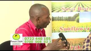 GATED FARMING KENYA-CANAAN GATED FARM.CALL THEM NOW!!!!