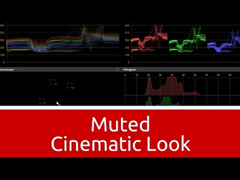 How to - Muted Cinematic Look in Davinci Resolve 12.5