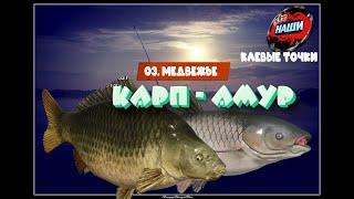 НАШИ КЛЕВЫЕ ТОЧКИ Русская рыбалка 4 Карп Белый Амур на о Медвежье 48 62
