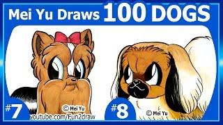 Cute Yorkie & Pekingese Puppy - Mei Yu Draws 100 Dogs #7 + #8 -100 DRAWINGS CHALLENGE - Fun2draw