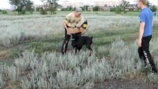 обучение на защиту Уральск КЛЖ Инсайт