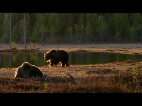 Wild Russia Ural Part 2 With English Subtitles