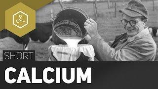 Calcium - Gut für die Knochen?  -  #TheSimpleShort