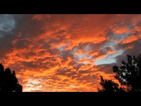"""New Mexico Tourism """"Day of Enchantment"""" Case Study"""