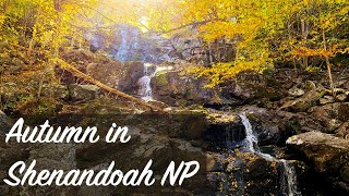 Three Great Autumn Hikes in Shenandoah National Park