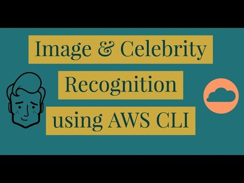 Image Recognition with AWS CLI   AWS Command Line Interface (CLI) Course