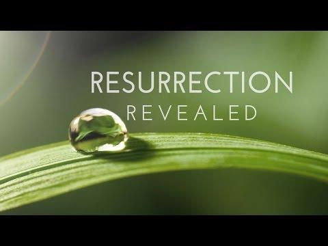 Resurrection on ABC - Interview with creator Aaron Zelman - #RR002