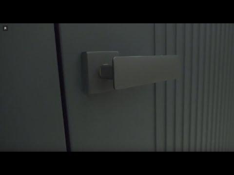 Межкомнатная дверь с уникальной капителью Academy Afina