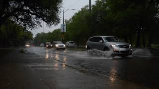 Street flooding at Magazine and Audubon Park in New Orleans