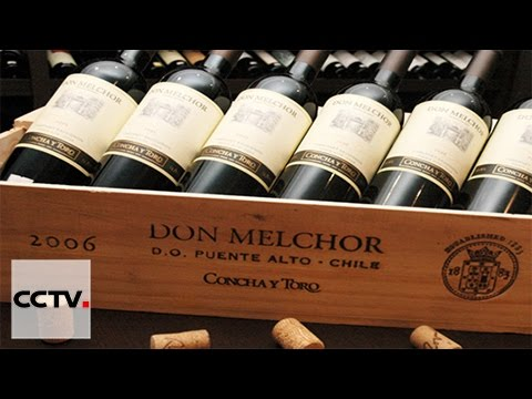More Chilean wines cheaper to Chinese consumers