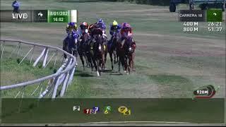 Vidéo de la course PMU PREMIO ZARDOZ HANDICAP