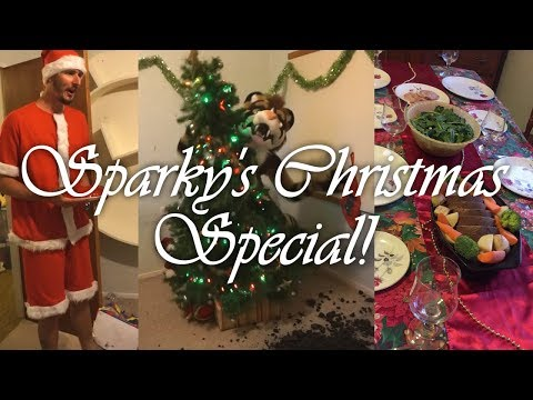 Christmas Special + Gift Unboxing!