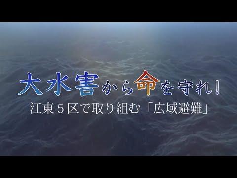 大水害から命を守れ! 江東5区で取り組む「広域避難」