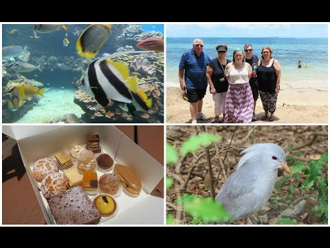 Sightseeing in Noumea - Cruise Day 11