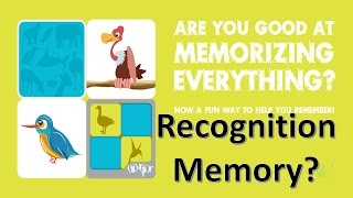 What is Recognition Memory ?