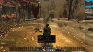 Vanguard: Saga of Heroes - Combat