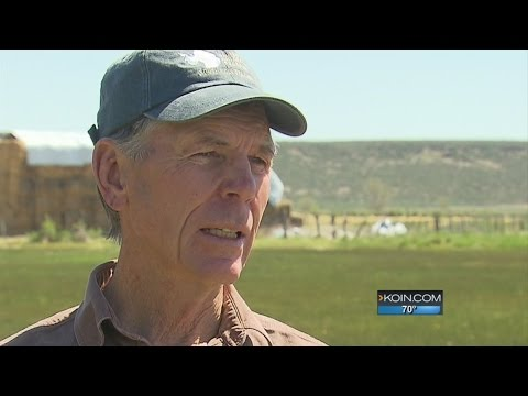 Malheur Refuge standoff: The ranchers' story