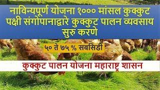 महाराष्ट्र शासनाच्या कुक्कुट पालन योजना भाग १ POULTRY FARMING SCHEME OF MAHARASHTRA GOVERNMENT