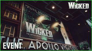Wicked UK | Wicked Media Night 2014