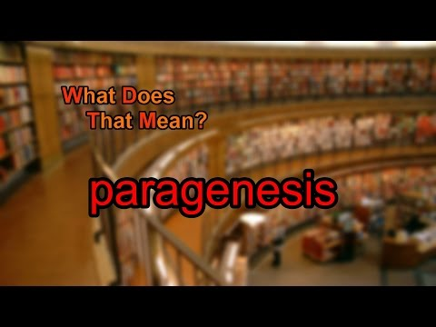 What does paragenesis mean?