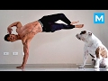 BEST WORKOUT PARTNER - Training with dog | Muscle Madness