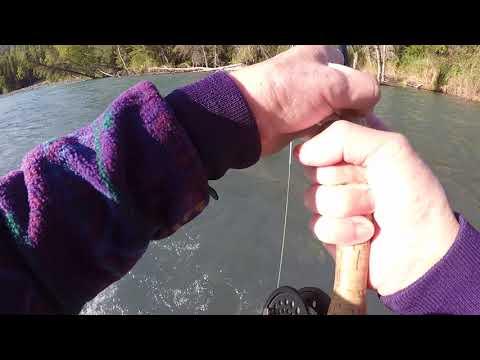 Upper Kenai The River Of Big Trout Dreams