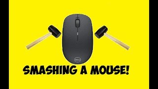 Smashing A Dell Computer Mouse