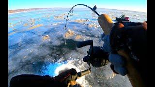 КРУПНЫЕ РЫБИНЫ ЛЕЗУТ В КАМЕРУ рыбалка зимой 2020 ПОДЛЕДНАЯ СЪЕМКА