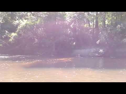 First Alapaha River siphon