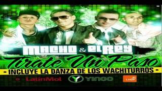 Macho Y El Rey - Ella Lo Baila