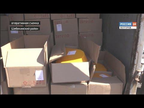 ГТРК Белгород - Украинцев все чаще привлекают к ответственности за контрабанду