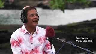 """Project KULEANA Nā Moʻo o Hilo presents """"Hilo Hula"""""""