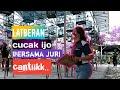 Cucak Ijo Latber Ampuh Untuk Terapi Cucak Ijo Sebelum Lomba  Mp3 - Mp4 Download