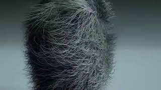 Gambar cover Edan Turun - Trio Macan