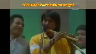 Download lagu (1,025)  CUCI MATA  -- Vokal  :  Nur Cholipah  --  Dangdut Tahun 1990 an