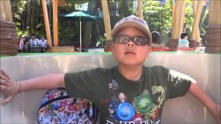Disneyland Spring 2013 part 2 vlog #73