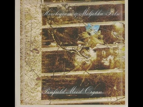 Horologium / Moljebka Pvlse - Penfield Mood Organ (Split 2008)